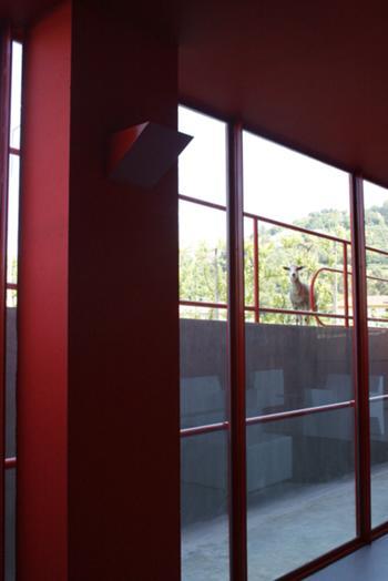 vista a partir do atrio de entrada no edificio para o exterior