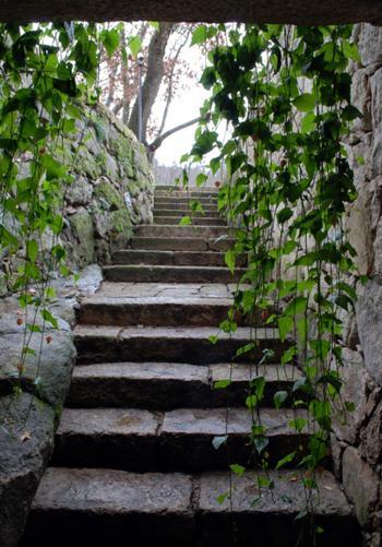 Vista escada entrada (Hab. 1)