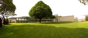 Casa da Árvore_foto 4