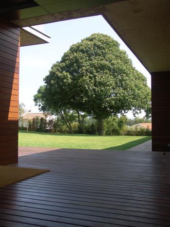 Casa da Árvore_foto 5