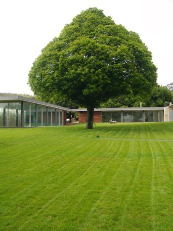 Casa da Árvore_foto 7