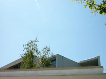 Casa em Santo Tirso 06