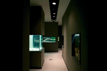 Sala de exposições